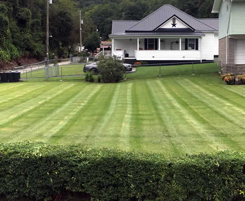 Lawn Mowing and Maintnenace Services near me